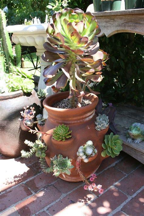 create  strawberry planter garden