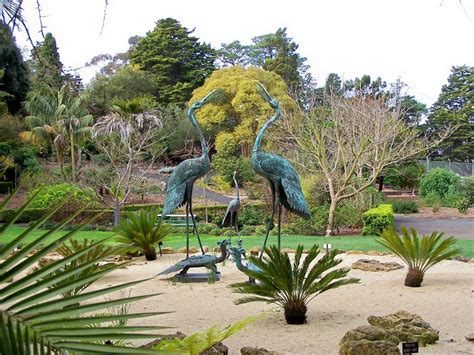 Geelong Botanic Garden Panoramio Photo Of Geelong Botanic Gardens