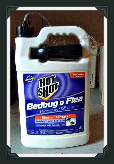 hot shot bed bug fogger does it work hot shot bed bug spray review