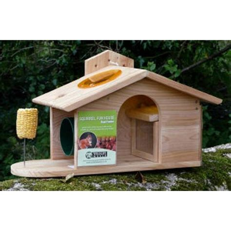 squirrel the house from up squirrel house feeder by wildlife world