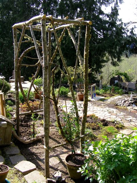 Ready Made Trellis 20 Best Images About Trellis S On Gardens