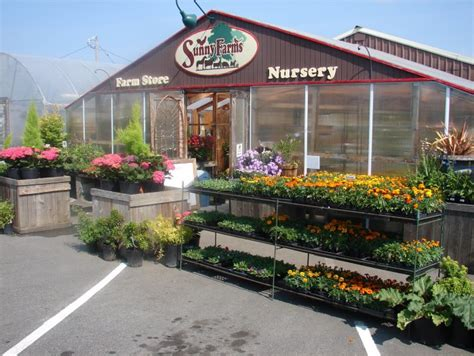 farms nursery and farm store sequim daily photo