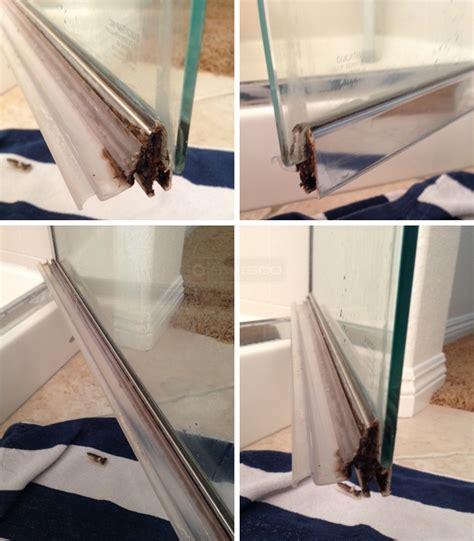 Shower Door Sweeps by Shower Door Sweep Swisco