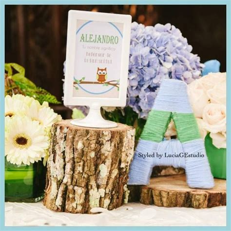 baby shower owl theme decorations owl theme baby shower ideas