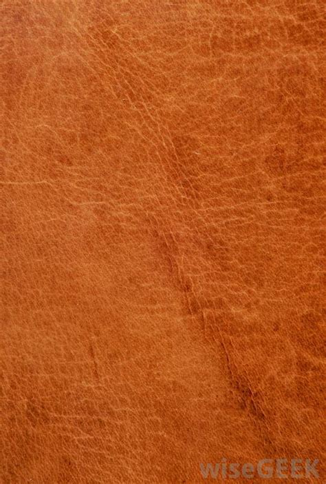 Grain Leather by What Is Grain Leather With Pictures
