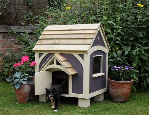buy cat house can cats eat bananas cancats net