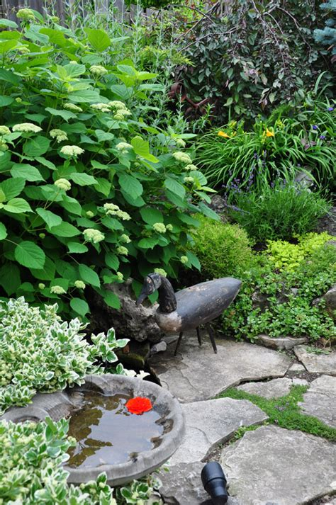 Three Dogs In A Garden Pin Ideas Small Water Features Small Water Garden Ideas