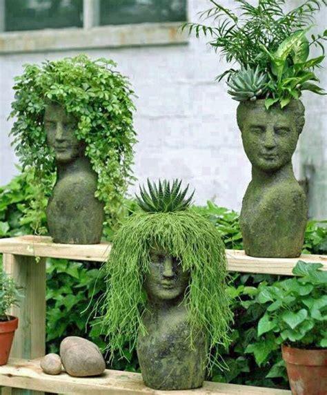 piante ornamentali da terrazzo piante ornamentali terrazzo