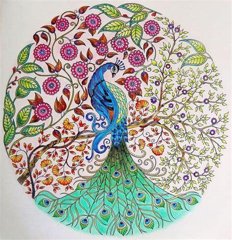 secret garden coloring book dk de 25 bedste id 233 er inden for floresta desenho p 229