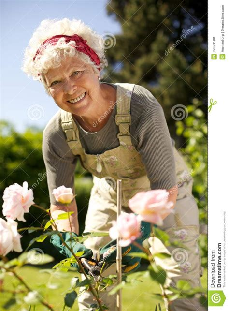 Backyard For Seniors Elderly Gardening In Backyard Royalty Free Stock