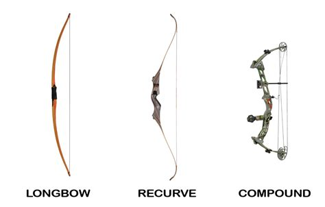 physics of archery the science explained