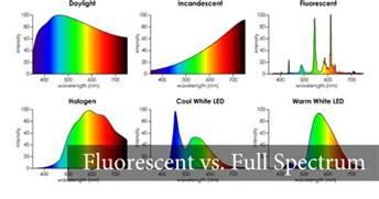light fluorescent full spectrum bulb near union county