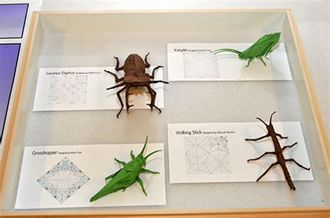 Origami Insect - outreach update entomology purdue 2011