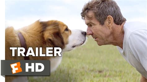 nedlasting filmer a dog s purpose gratis assistir trailer official do filme a dog s purpose