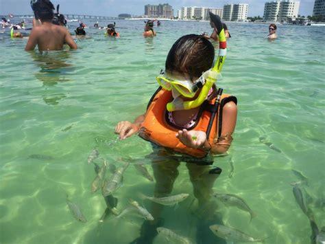 catamaran cruise destin florida destin snorkeling excursion destin boardwalk