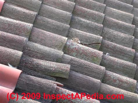clay tile roof damage leaks  wear inspection
