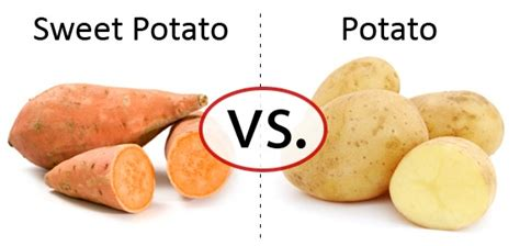 Exercise For Potatoes by Sweet Potato Vs White Potato Which Is Better Indian