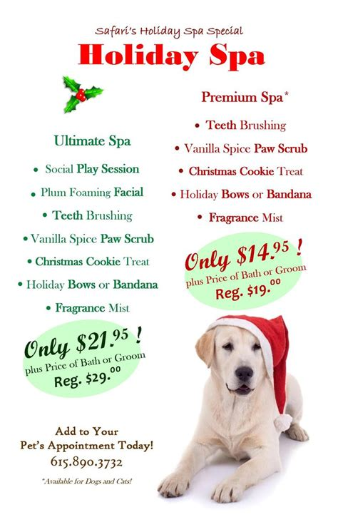 christmas gift ideas for dog groomer 85 best grooming promotions ideas images on pets and decor