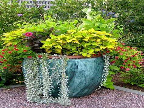 Annual Flower Garden Designs Large Container Gardening Garden Container Ideas