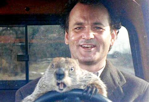 bill murray groundhog day imdb groundhog day