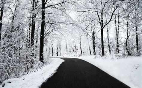 black winter road snow black white winter forest nature