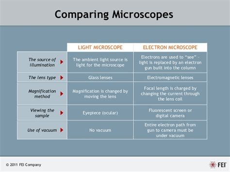 Difference Between Light Microscope And Electron Microscope by An Introduction To Electron Microscopy By Fei Company