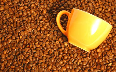 coffee wallpaper download download wallpaper in coffee grains download photo
