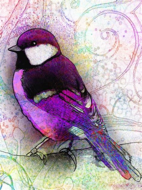 beautiful purples bird