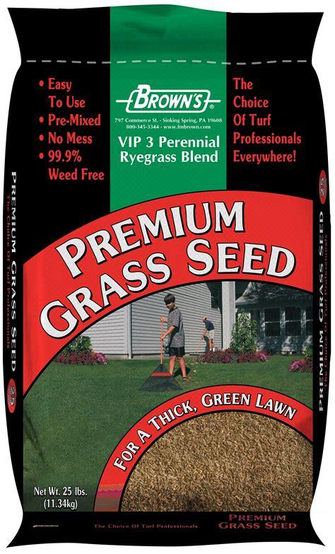vip  perennial ryegrass blend ryegrass turfgrasses