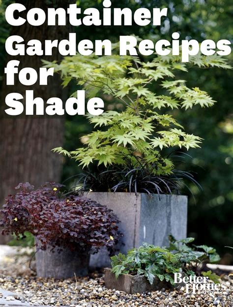 Design For Potted Plants For Shade Ideas Container Garden Ideas For Shade Photograph Container