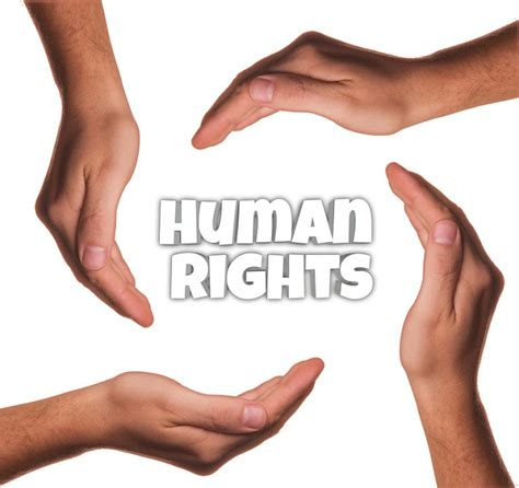 Human Rights Act Section 7 by Web When Prosecution For Offence Protection Of