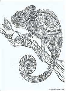therapeutic coloring coloring pages zentangle doodling