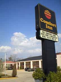 comfort inn usa locations comfort inn forest forest mississippi comfort inn