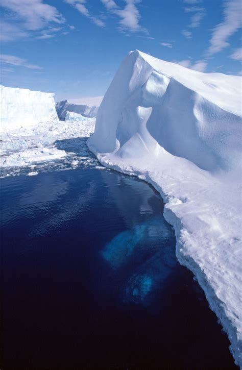 icebergs glaciers revised edition books icebergs polar regions fact file antarctica and the arctic