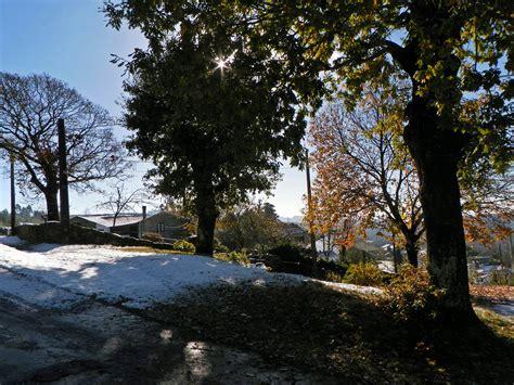 imagenes naturaleza invierno fotos gratis paisaje 225 rbol naturaleza bosque nieve