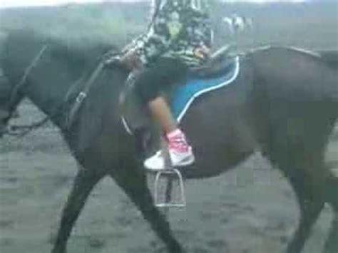 Sho Kuda Di naik kuda di laut pasir gunung bromo