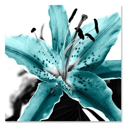 teal colored flowers teal colored flowers teal aqua blue