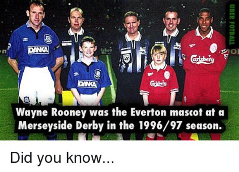 Everton Memes - or wayne rooney was the everton mascot at a merseyside