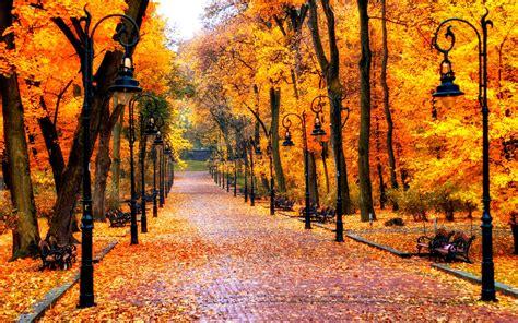 sonbahar resimleri fotograflari hd araba resimleri uenlue