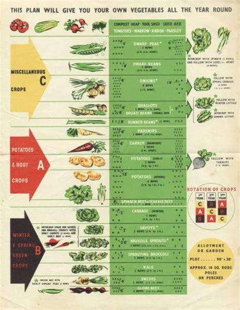 Year Around Crop Rotation Chart For The Garden Pinterest Vegetable Garden Rotation Chart