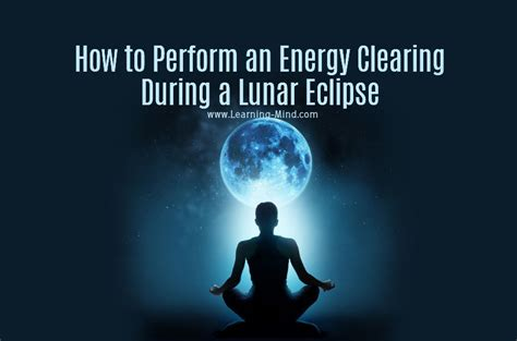 how to clear negative energy humans can absorb and transfer energy just like plants do