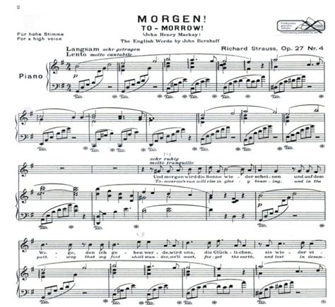 Strauss Synonym by List Of Synonyms And Antonyms Of The Word Morgen Strauss