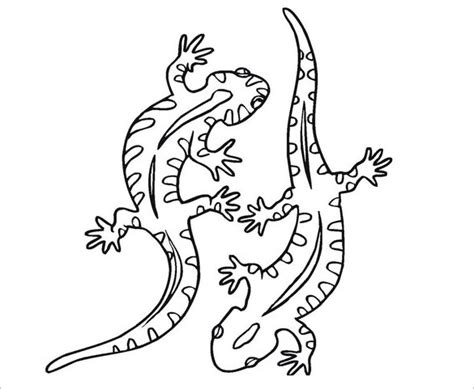 cute gecko coloring pages simple gecko drawing www pixshark com images galleries