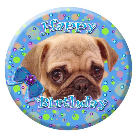 happy pug puppy items similar to pug puppy puggie happy birthday pug collector button pin magnet polka