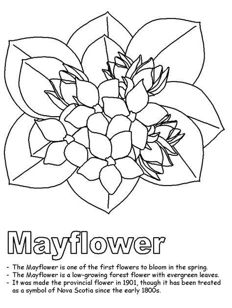 free mayflower coloring pages coloring home