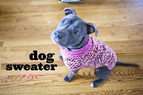 crochet pattern for large dog coat pattern make great