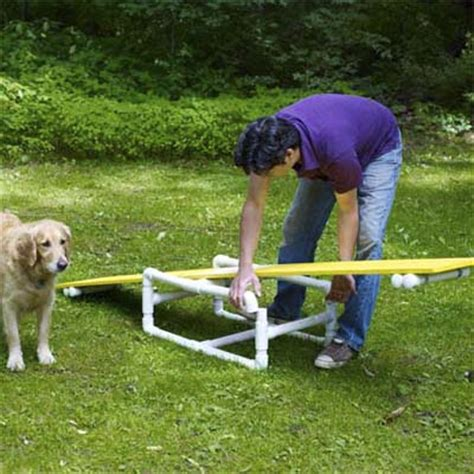 diy agility course position the plank on the base how to build a pet agility course this house