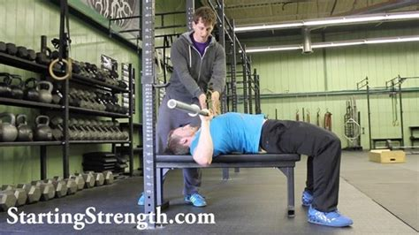 leg drive bench press training log starting strength