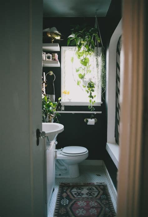 plants for dark bathroom badev 230 relse badev 230 relser med badekar boligmagasinet dk