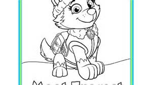 paw patrol paw patrol meet everest colouring pack